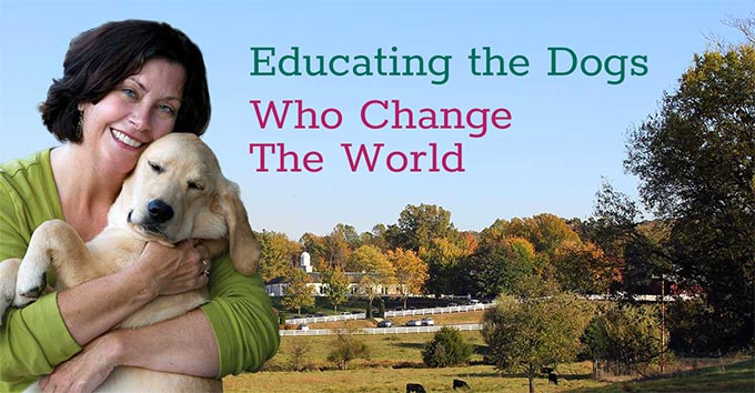 Educating the Dogs Who Change the World